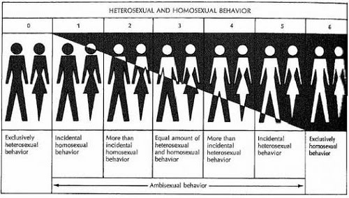 Heterolsexual meaning